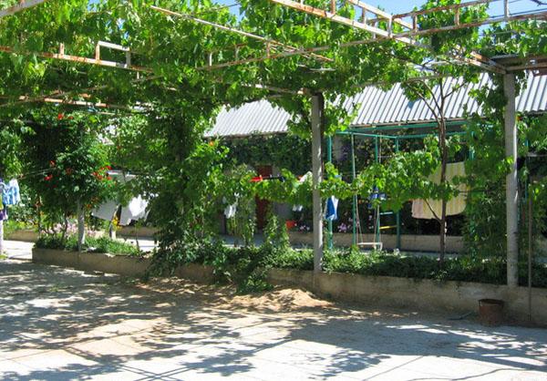 станция благовещенская анапа фото